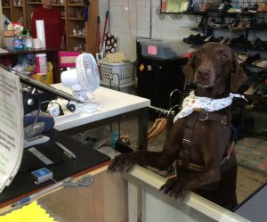riley-cashier-training-feb2015-crop