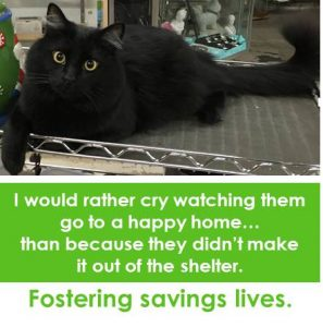 foster-ricky-cry-happy-home