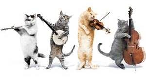 image-cats-playing-violins-cropped